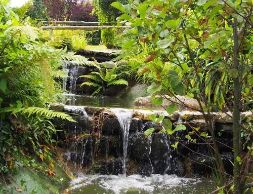 Jardines y cascadas
